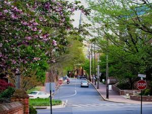 Calvert Street in Annapolis. Photo by ktylerconk.